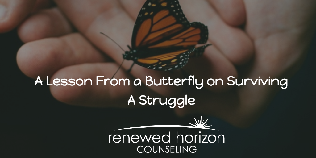 Surviving a Struggle-Butterfly Style