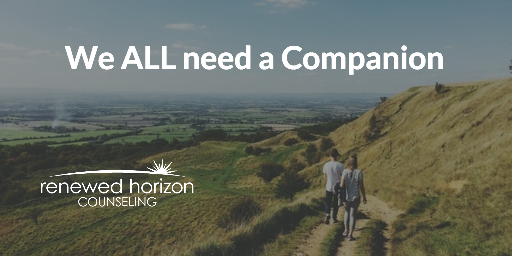 We ALL Need Companionship